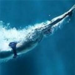 Методика обучения плаванию Total Immersion: «Полное погружение. Как плавать лучше, быстрее и легче»