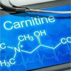 Биосинтез L-карнитина и его назначение